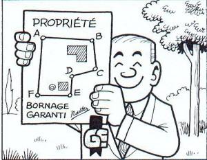 Bornage SCP Vincent Soissons